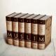 Sahih Muslim, version intégrale 6 volumes - Imam Muslim - Editions Al Hadith